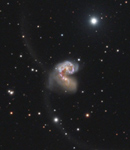 Die Antennengalaxien NGC 4038/9